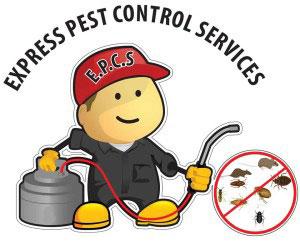 Pest Control Cyprus | Nicosia